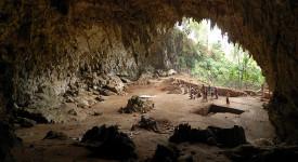 Пещера на остров Флорес, в която са открити фосили на Homo floresiensis.Wikimedia Commons
