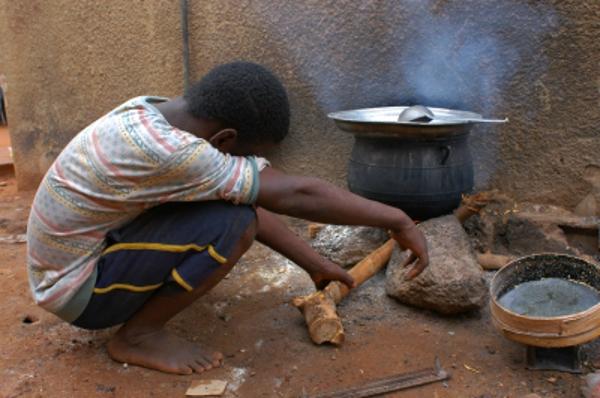 © Africa / FreeDigitalPhotos.net