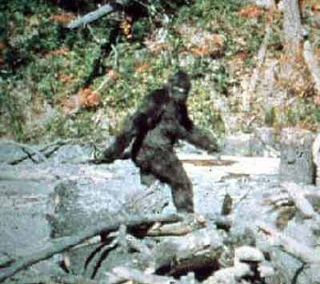 Единствената достойна снимка на Йети е кадър от филм, заснет през 1967 година в Калифорния.© Център по криптозоология