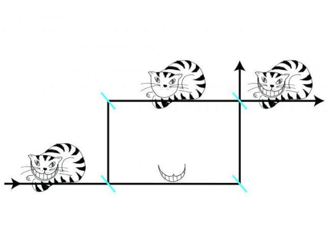 Неутроните в експеримента се държат буквално като Чешърския котарак – самите частици и техните спинове се оказали пространствено разделени.© Leon Filter/Vienna University of Technology