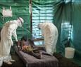 Ето как вирусът ебола поразява имунната система