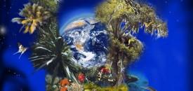 Изчерпали сме всички биоресурси на Земята