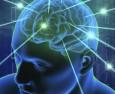 Дори еднократен прием на антидепресанти изменя мозъка