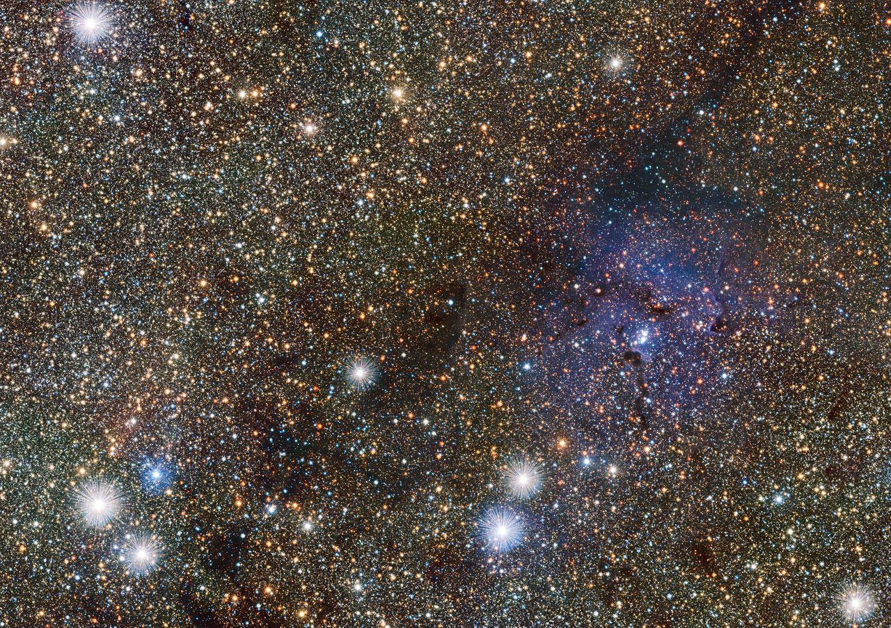 Фрагмент от обзора на централната част на Млечния път. Вдясно е мъглявината Трифида. Благодарение на това, че в инфрачервения диапазон тя е прозрачна, са станали ясно видими многобройни скрити зад нея неизвестни обекти. Сред тях са двете новооткрити цефеиди.© ESO/VVV consortium/D. Minniti