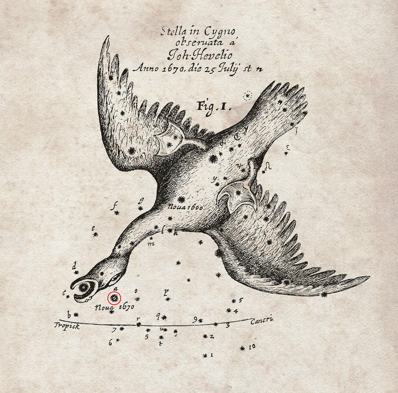 Положението на Новата звезда, появила се на небето през 1670 г. (отбелязано с червено), е нанесено на тази карта от прочутия астроном Ян Хевелий (кликни върху изображението).© Royal Society