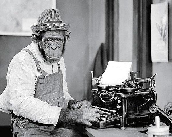 маймуна пише на машина