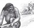 Снежният човек е жена маймуна от XIX век?