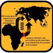 255 геномни последователности от египтяни и етиопци сочат, че най-вероятният маршрут на нашите предци е бил северният. © Luca Pagani