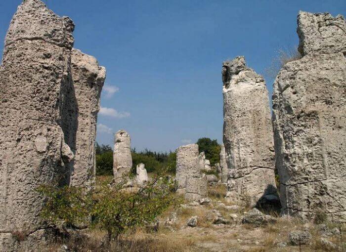 Побитите камъни - Каменната гора