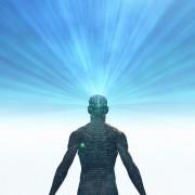 разум и тяло, душа, дух,