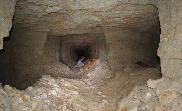 Основният тунел на кучешките катакомби. © P.T. Nicholson