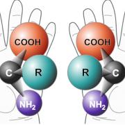 Хиралните изомери не могат да се съвместят помежду си, както не могат да се съвместят дясната и лявата ръка. Изображение Wikimedia