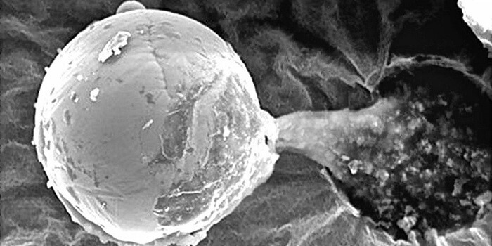 Микроскопичното метално топче, открито на 27 км височина.