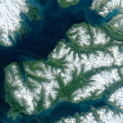 Полярният Шпицберген позеленя (снимки, видео)