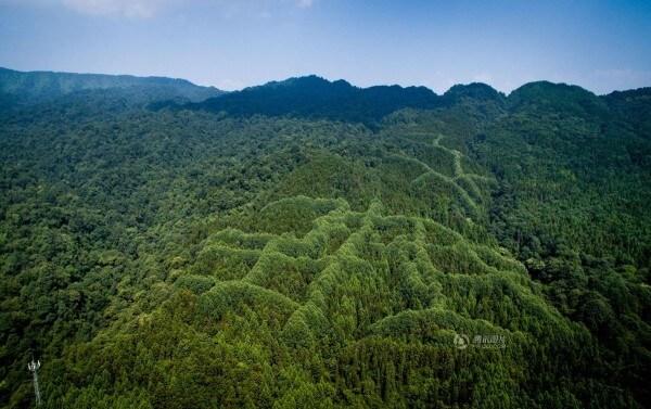 Огромният китайски йероглиф на върха на зелената гора. Tencent.com