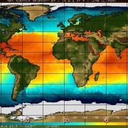 Температурата на повърхностния слой на океана по Фаренхайт, 13 август 2015 г. © NOAA