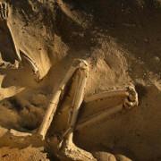 човешки останки, древен човек, прародител