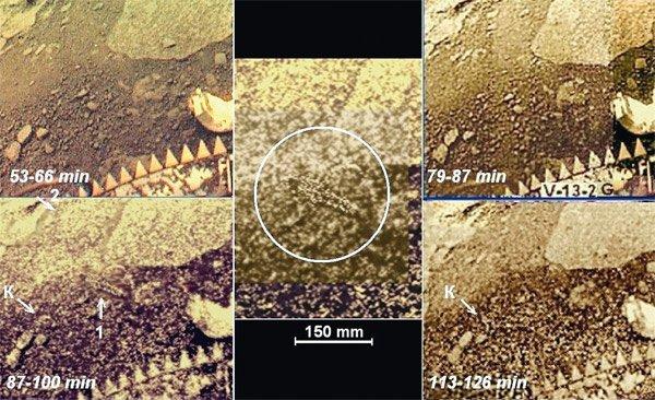 """Обектът """"скорпион"""" (1) се появява на панорамата, заснета от 87-а до 100-тна минута. На изорбраженията преди 87-а и след 113-а минута той липсва. Слабоконтрастният обект 2, заедно с частично светла среда, също присъства само на панорами 87—1."""