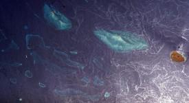 Плитките води на Червено море край бреговете на Саудитска Арабия разкриват коралови рифове по повърхността и движенията на повърхностните води. © Earth Sciences and Image Analysis Laboratory at Johnson Space Center
