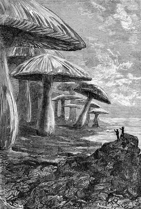"""Илюстрация на Едуард Риу към романа """"Пътешествие до центъра на Земята"""" на Жул Верн, 1864 г."""
