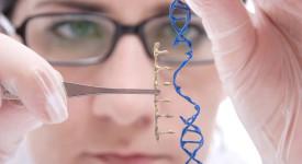 гени, генна терапия, генна модификация, геном