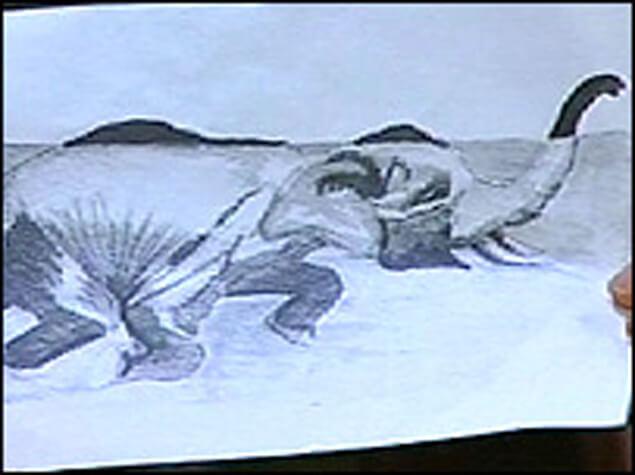 Схема на създаваната от слона илюзия за чудовище.