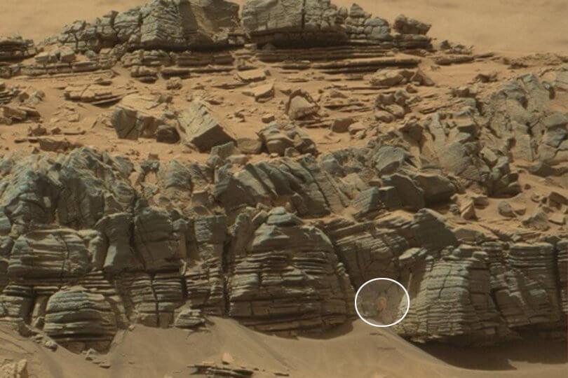 рак на Марс