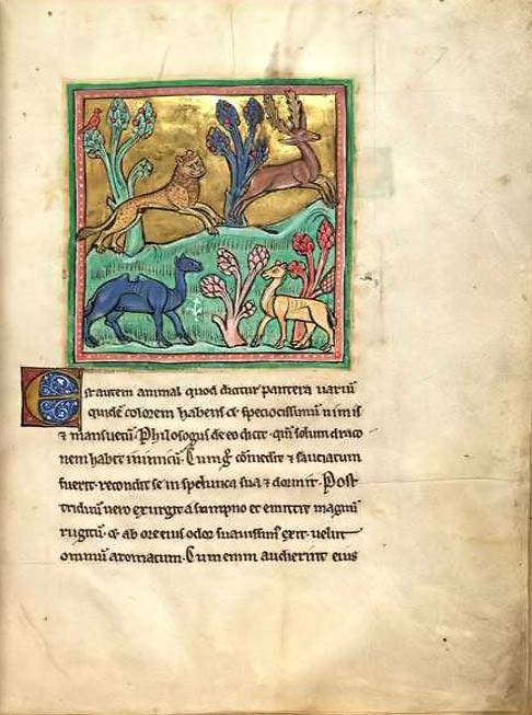 Леопард от Рочестърската книга на зверове. Wikimedia Commons