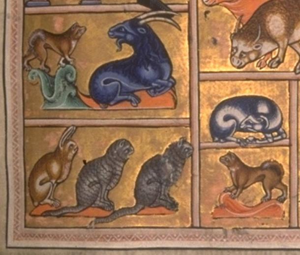 Различни животни от Абърдийнската книга на зверове.