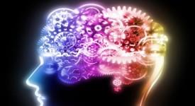 съзнанието е навсякъде