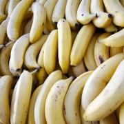 бананите изчезват