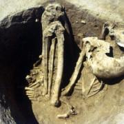 Останки на древен човек от Франция. © L. Lang