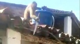пияна маймуна