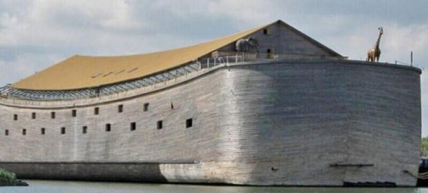 © Ark of Noah Foundation