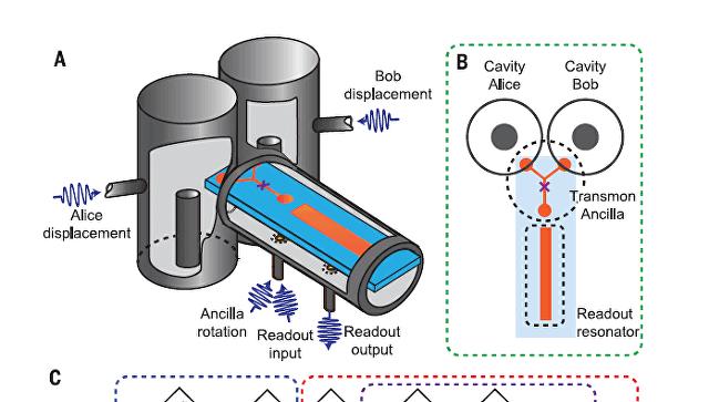 Схема на клетката за котката на Шрьодингер, разрязана на две. © Wang et al. / Science 2016