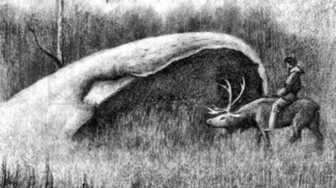 В котлите може да се влезе върху елен. (Wikipedia)