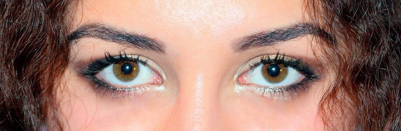 brown-eyes-1261697_1280