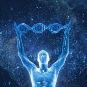 dna-human-body