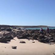 rosemary_island