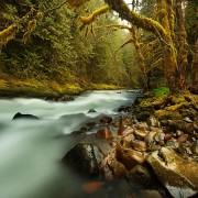 creek-731483_640
