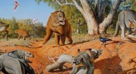 Мегафауната, населявала Австралия преди 45 хиляди години