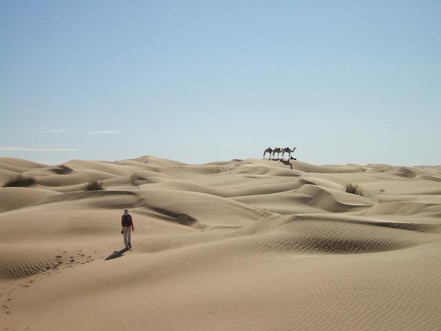 Сахара. pixabay.com