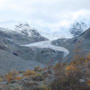 Morteratsch glacier:  Travpacker.com