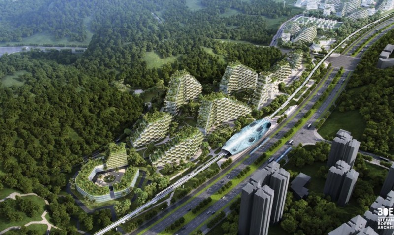 forest-city-5