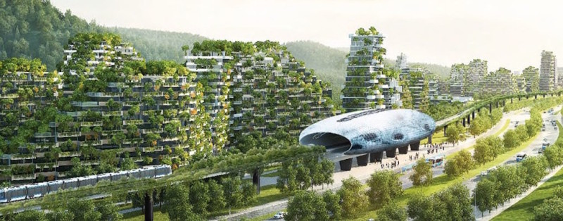 forest-city-7