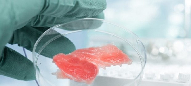 Месо, отгледано в лаборатория
