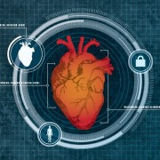 heart-biometric-scan-1