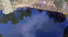 maya-site-pond