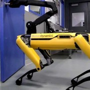 Boston Dynamics /YouTube