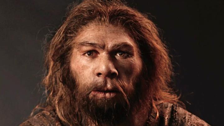 noticia-neandertal-desaparicion_jpg
